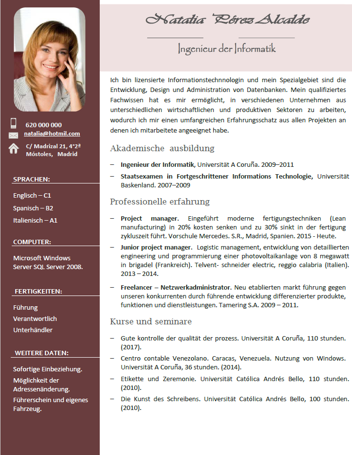 plantilla de curriculum vitae profesional en aleman