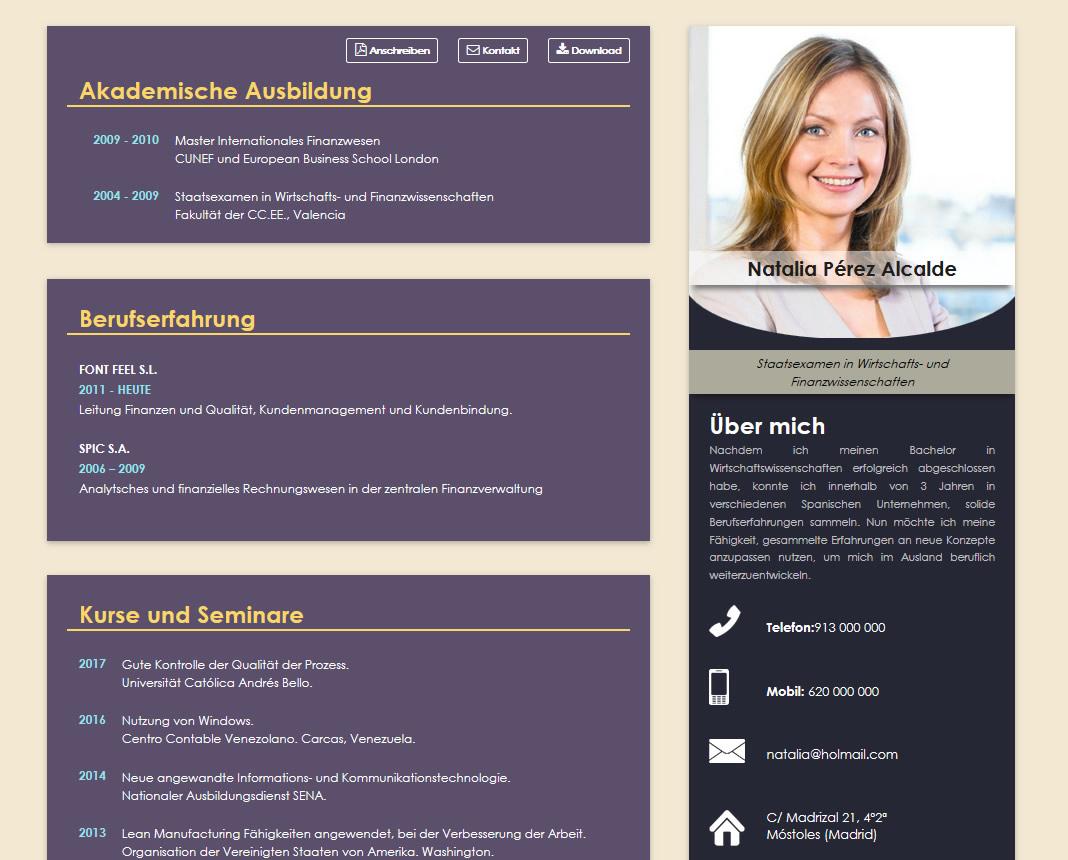 como elaborar curriculum profesional aleman infografia