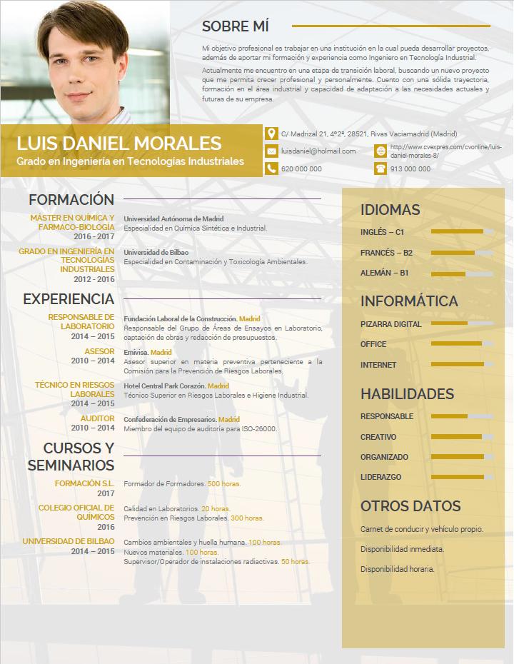 Elaboracion De Curriculum Profesional Plantillas De Cv Para Empresas