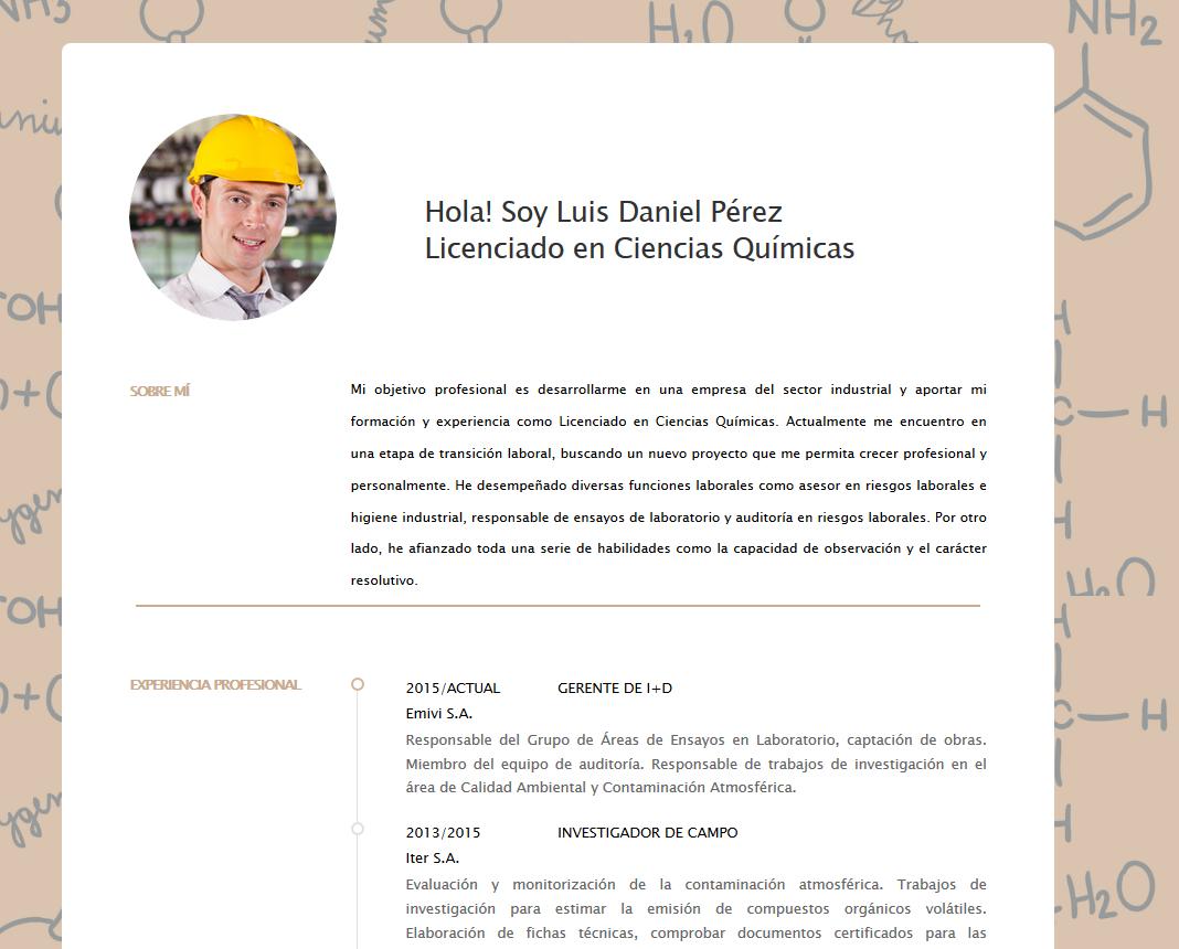 curriculum online empresas