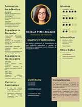 currículum profesor n° 14 - trabajo en colegios