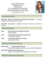 currículum profesor n° 40 - trabajo en colegios