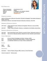 currículum profesor n° 46 - trabajo colegios privados