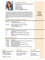 currículum profesor n° 38 empleo colegios privados