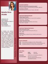 currículum profesor n° 50 para colegios privados