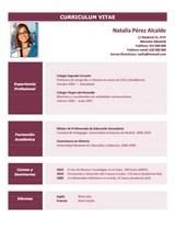 currículum profesor n° 69 empleo colegios privados