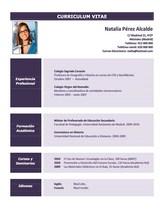 currículum profesor n° 76 empleo colegios privados