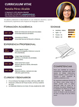 currículum profesor n° 3 - enviar cv colegios