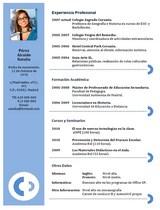 currículum profesor n° 14 para mandar a escuelas