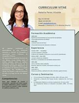 currículum profesor n° 115 - trabajo en colegios