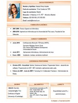 currículum profesor n° 19 - trabajo en telefónica, ford, peugeot, renault, nissan