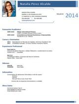 currículum profesor n° 27 - buscar empleo en ford, peugeot, renault, nissan