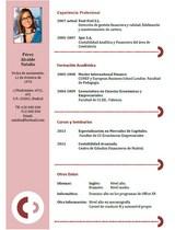 currículum profesor n° 23 - mandar cv hoteles