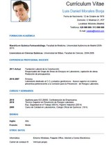 currículum profesor n° 36 - mandar cv hoteles