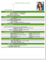currículum profesor n° 61 - trabajo en mercadona, repsol, cepsa, endesa, iberdrola