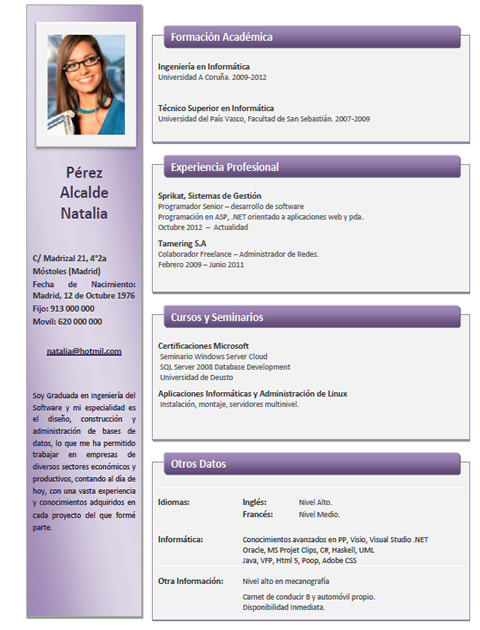 Ejemplo De Curriculum Vitae De Un Director De Marketing