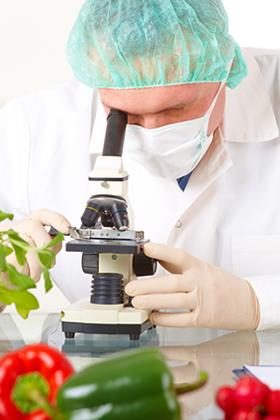 Trabajar como especialista en Ciencia y Tecnología de los Alimentos 1